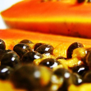 La papaye bio riche en caroténoïdes antioxydant puissant