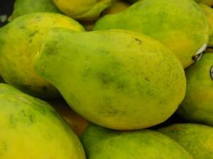 la papaye bio anti-âge riche en antioxydant naturel puissant